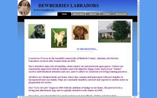 Dewberries Labradors
