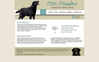 Mountain Meadow Labradors