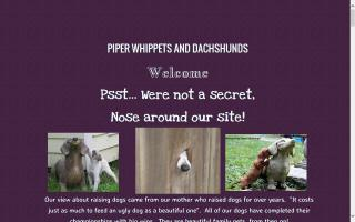 Piper Whippets and Dachshunds