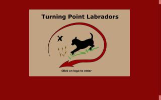 Turning Point Labradors / Worth Every Penny