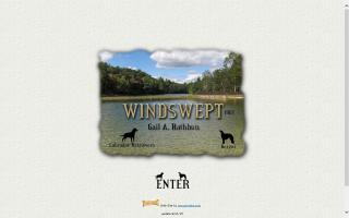 Windswept Labrador Retrievers