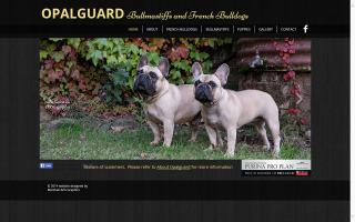 Bullmastiffs and French Bulldogs of Opalguard Australia