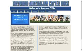 Drywood Australian Cattle Dogs