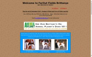 FarOut Fields Brittanys
