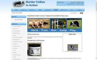 Border Collies In Action