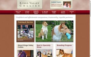 Kings Valley Collies