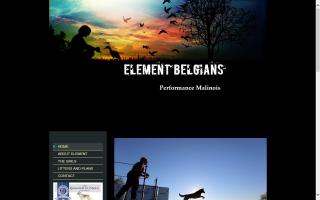 Element Belgians