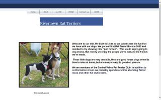 Rivertown Rat Terriers