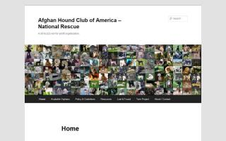 Afghan Hound Club of America Rescue - AHCA Rescue
