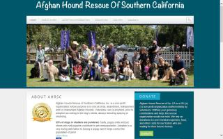 Afghan Hound Rescue of Southern California - AHRSC