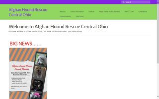 Afghan Hound Rescue Central Ohio - AHRCO