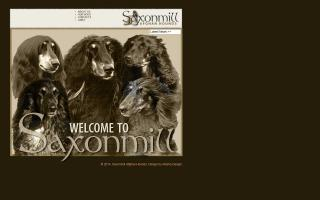 Saxonmill Afghan Hounds