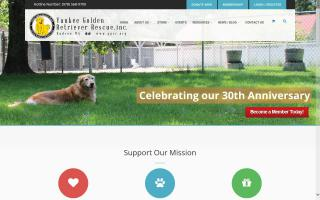 Yankee Golden Retriever Rescue - YGRR