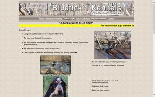 Bluetick 1 Kennels