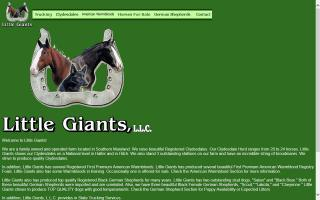 Little Giants, LLC