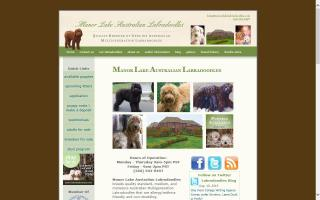 Manor Lake Australian Labradoodles