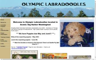 Olympic Labradoodles