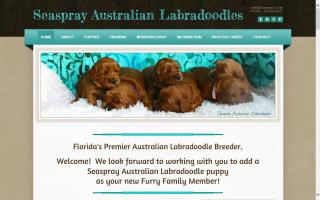 Seaspray Australian Labradoodles