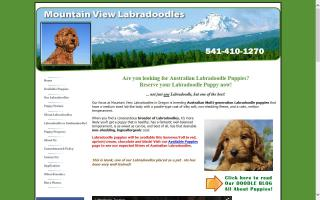 Mountain View Labradoodles