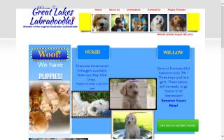 Great Lakes Labradoodles