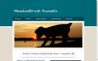 Meadow Brook JRTerriers