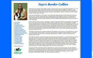 Fayes Border Collies