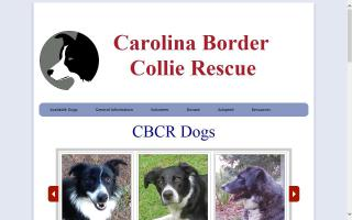 Carolina Border Collie Rescue