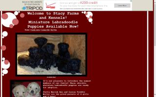 Stacy Farms and Kennels