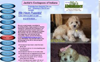 Jackie's Cockapoos of Indiana