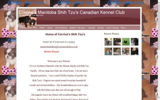 Corrine's Canadian Kennel Club Shih Tzus