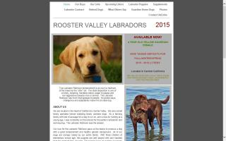 Rooster Valley Labradors & Labradoodles