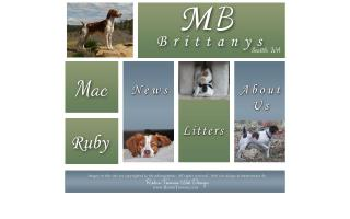 MB Brittanys