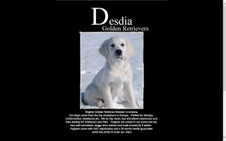 Desdia Golden Retrievers and Coton De Tulears