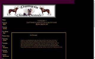 Dunwin Chinese Cresteds