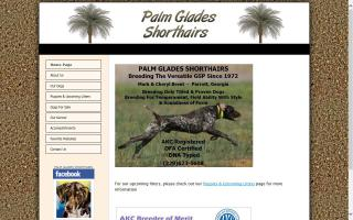 Palm Glades Shorthairs