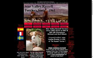 Star Valley Russell Terriers