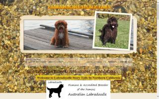 Labradoodle Story Tails