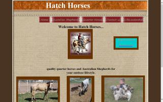 Hatch Horses & Aussies