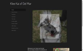 Klee Kai of Del Mar
