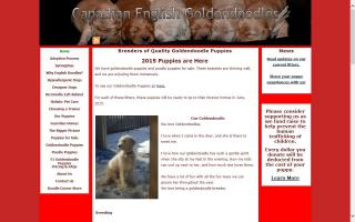 Canadian English Goldendoodles