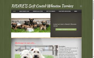 RIDIRE'S Soft Coated Wheaten Terriers