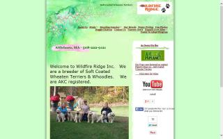 Wildfire Ridge - Whoodles, Wheaten Terriers