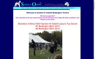Sandon N' Oakhill Bedlington Terriers