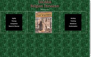Tacara Belgian Tervuren