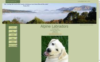 Alpine Labradors