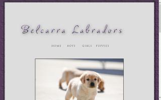 Lawson Labradors