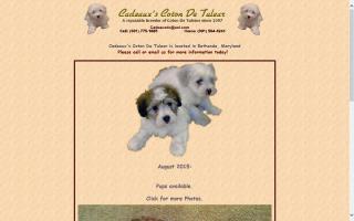 Cadeaux's Coton De Tulear