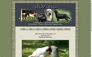 HiView Labradors