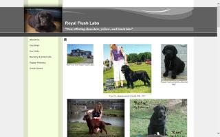 Royal Flush Labs