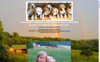 Bachman Mill Farm / Shadyside Labradors